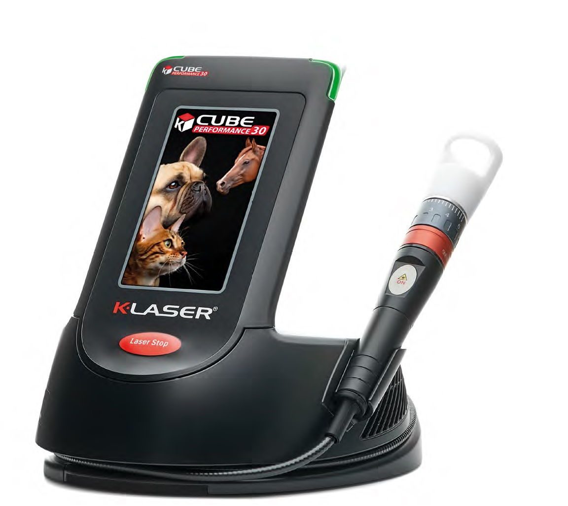 K-Laser Cube 4 Plus 30 model Class IV therapeutic laser for veterinary practices