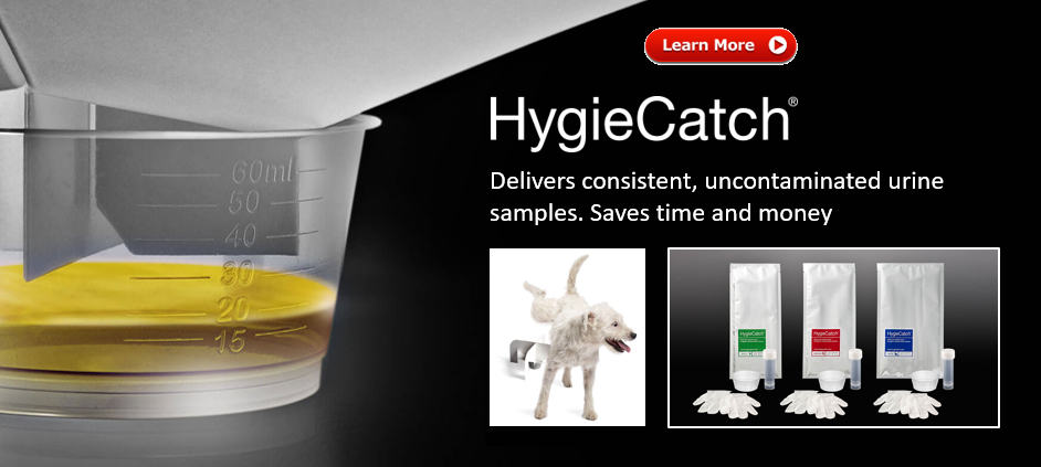 HygieCatch - Urine Sample Kits