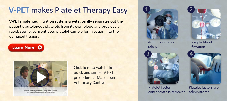 V-PET Platelet Therapy
